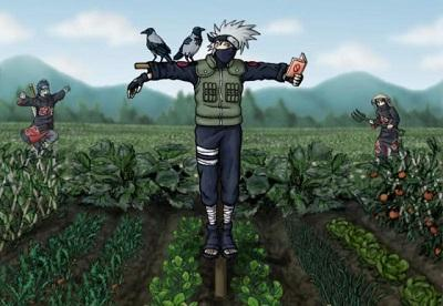 Kakashi The Scarecrow Shinobi.preview.jpg