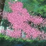 FlowerEscapeB.jpg